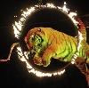 Цирки в Шилово